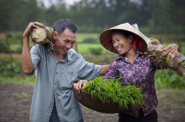越南在性别平等领域取得巨大成就 hinh anh 1