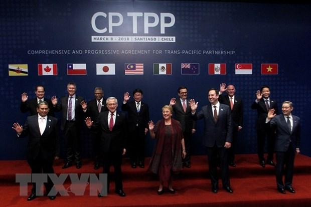 11国在智利正式签署《全面进展的跨太平洋伙伴关系协定》 hinh anh 1