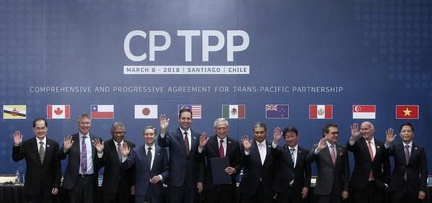 """《跨太平洋伙伴关系全面进展协定》:""""贸易进展""""是未来的选择 hinh anh 1"""