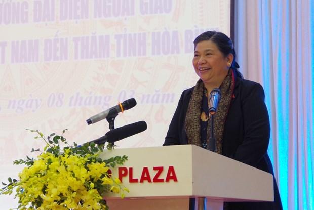 国会常务副主席丛氏放同驻越大使和外交代表机构首席代表访问和平省 hinh anh 1