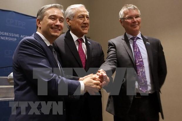 CPTPP签署后加拿大、智利与新西兰三国承诺将促进合作 hinh anh 1