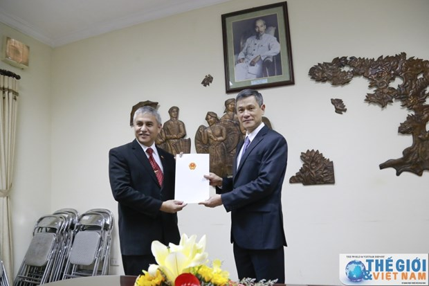 越南向印尼新任胡志明市总领事授予领事认证 hinh anh 1
