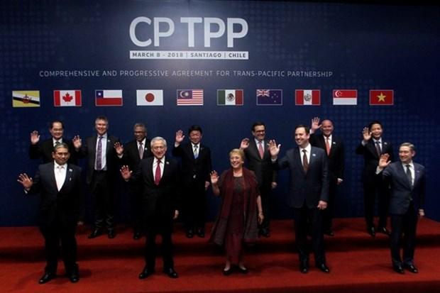 越南驻智利大使:CPTPP将为越智经贸与投资合作注入强劲动力 hinh anh 1