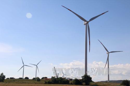 广平省加大对可再生能源领域招商引资力度 hinh anh 1