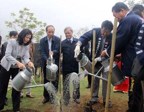 北宁省举行樱花园捐赠暨植树仪式 hinh anh 1