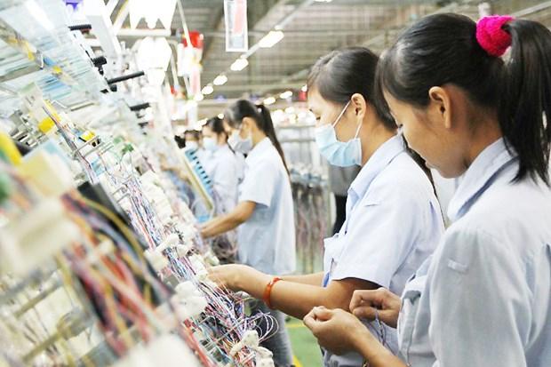 东盟-澳大利亚特别峰会:新兴产业是增长与就业的引擎 hinh anh 1