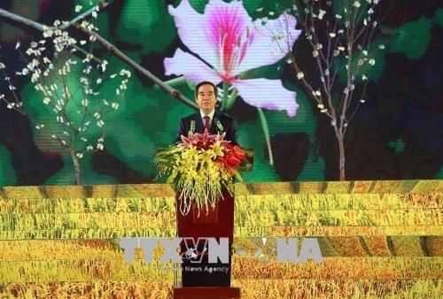 2018年奠边省羊蹄甲花节有助于弘扬传统文化 hinh anh 2