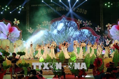 2018年奠边省羊蹄甲花节有助于弘扬传统文化 hinh anh 1