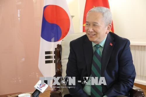 越南驻韩国大使阮武秀:越韩两国关系的未来将更加明朗 hinh anh 1