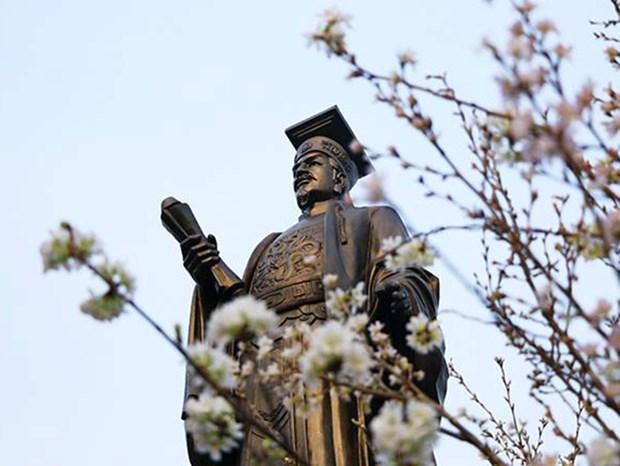 日本樱花在李太祖花园盛开 迎接日本文化交流节 hinh anh 1