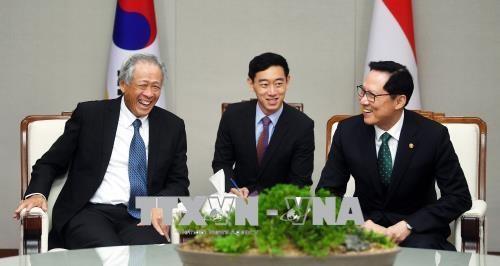 韩国和新加坡同意维持伙伴关系共同解决安全问题 hinh anh 2