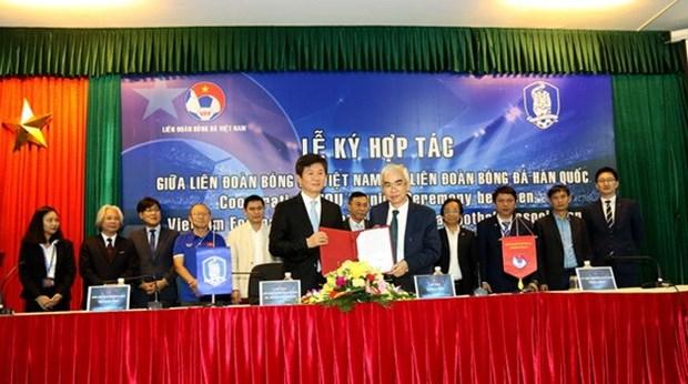 韩国足球协会主席:越南有望成为世界足球强国 hinh anh 1