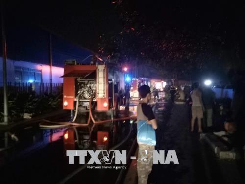 胡志明市:高层公寓发生火灾 造成13死28伤 hinh anh 1