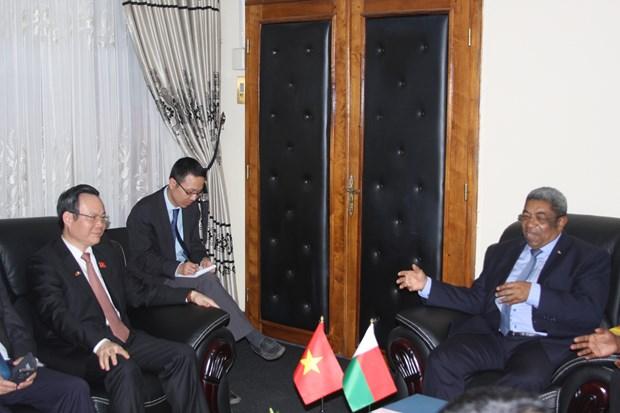 越南国会高级代表团开始对马达加斯加共和国进行访问 hinh anh 1