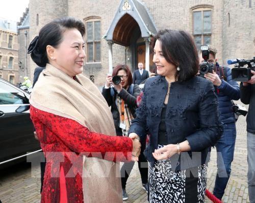 越南国会主席阮氏金银探访荷兰三角洲研究院 hinh anh 1