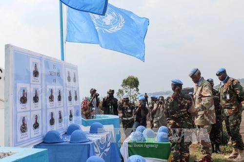 越南常驻联合国大使:推进联合国维和行动改革 有效应对国际安全挑战 hinh anh 1