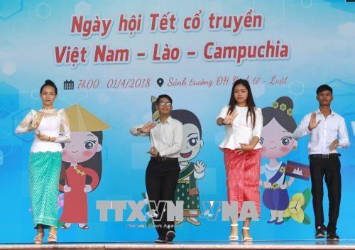 柬老越传统节日活动热闹亮相胡志明市 hinh anh 1