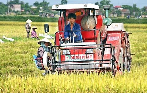 越南制造的农业机械颇受孟加拉国消费者的青睐 hinh anh 2