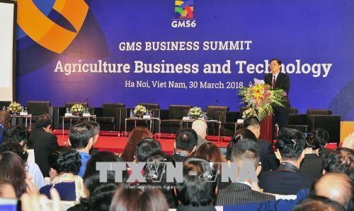 GMS6和CLV 10:高科技农业为促进GMS区域经济增长注入新活力 hinh anh 1