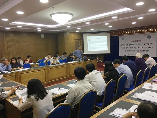 """""""少数民族政策制定和落实工作国际经验""""研讨会在胡志明市举行 hinh anh 1"""