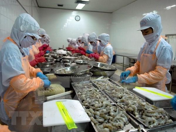 第一季度坚江省商品出口额猛增 hinh anh 1