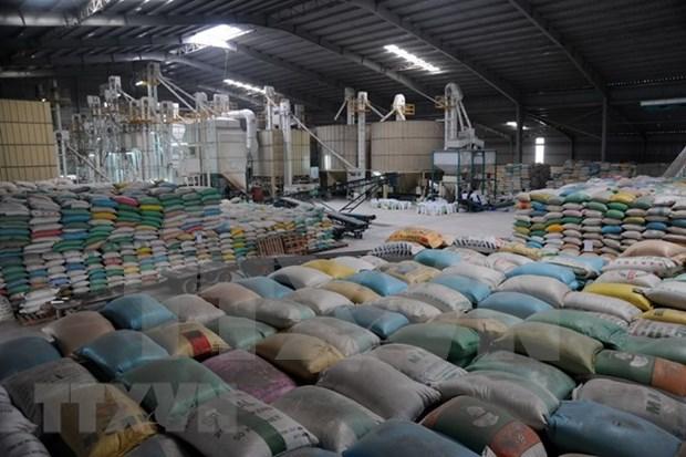 第一季度坚江省商品出口额猛增 hinh anh 2