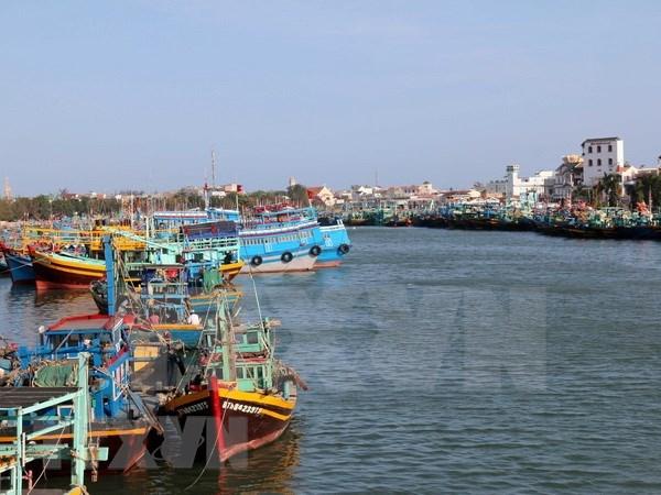 越南将从严处置非法捕捞渔船 hinh anh 1