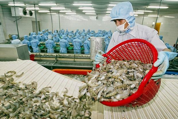 越南发挥优势克服虾类产品出口面临的困难和挑战 hinh anh 1
