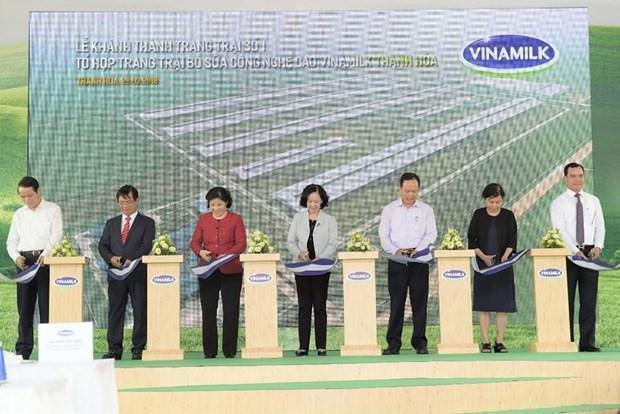 越南乳业股份公司将在清化省新建四个高科技奶牛农场 hinh anh 1