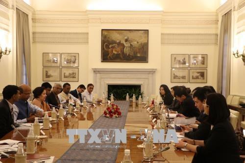 越南与印度第十次政治磋商和第七次战略对话在新德里举行 hinh anh 1