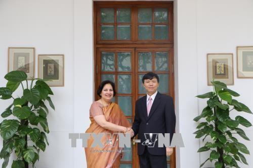 越南与印度第十次政治磋商和第七次战略对话在新德里举行 hinh anh 2