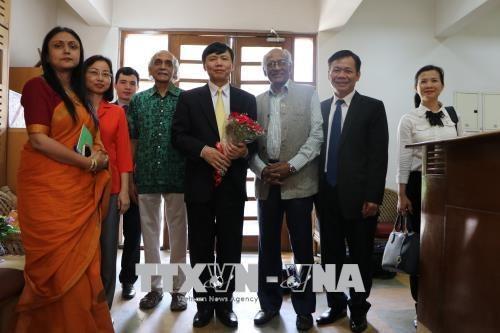 越南与印度第十次政治磋商和第七次战略对话在新德里举行 hinh anh 3