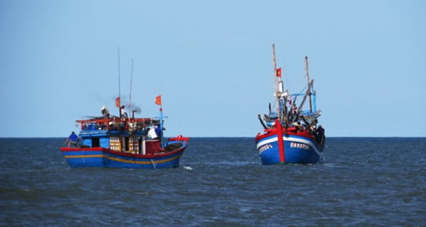 巴地头顿省力争到2019年彻底解决渔船和渔民侵犯外国海域的问题 hinh anh 1