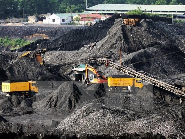 今年第一季度越南煤炭与矿产工业集团煤炭销售量达954万吨 hinh anh 2