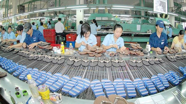《跨太平洋伙伴关系全面及进步协定》成为越南企业获取长期利益的新平台 hinh anh 1