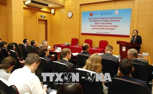 越南与丹麦举行关于预防非传染性疾病的座谈会 hinh anh 1