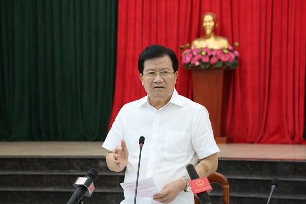 政府副总理郑廷勇:2021年前需要完成龙城机场征地拆迁工作 hinh anh 2