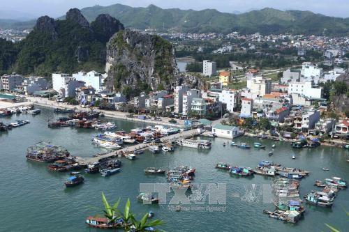 越南《经济特区法》(草案)将进一步放松对限制性行业的规定 hinh anh 1