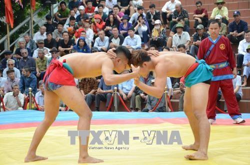 2018年第五届全国民族式摔跤比赛吸引100多名选手参加 hinh anh 1