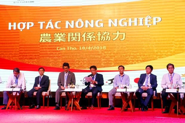 促进九龙江三角洲各地方与日本伙伴的投资合作 hinh anh 3