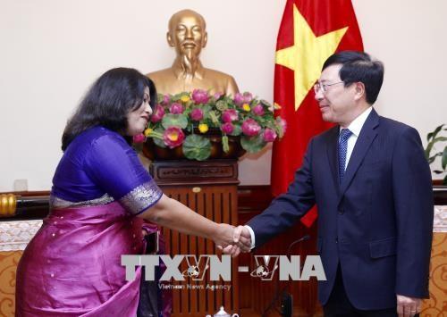越南政府副总理兼外交部长范平明会见孟加拉国驻越南大使 hinh anh 1