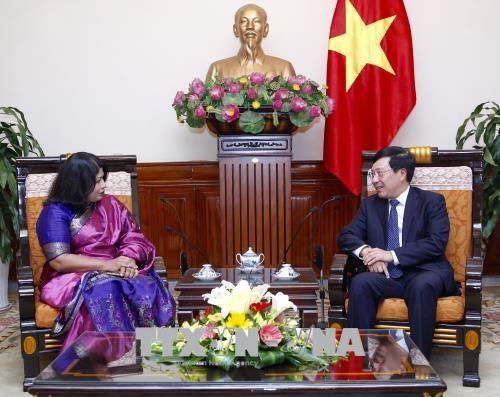 越南政府副总理兼外交部长范平明会见孟加拉国驻越南大使 hinh anh 2