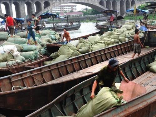 越南边贸商人协会成立 hinh anh 1