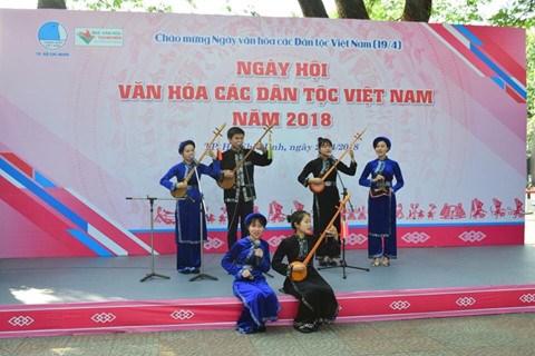 越南各民族文化节在胡志明市举行 hinh anh 1