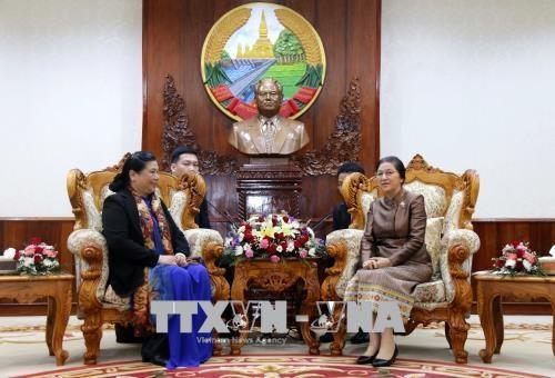 越南国会与老挝国会加强合作 hinh anh 1