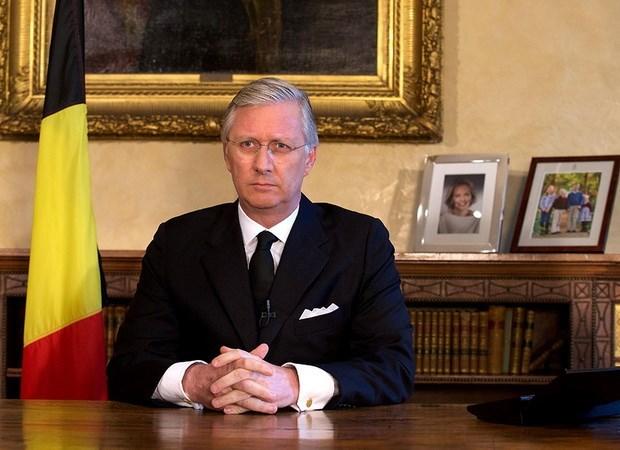 比利时国王:比越关系发展势头良好 hinh anh 1