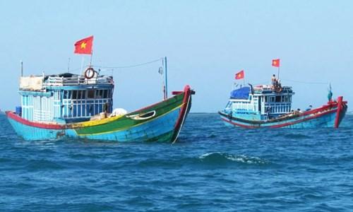 越南农业与农村发展部:中国在归属越南主权的海域实施的休渔令是无效的 hinh anh 1