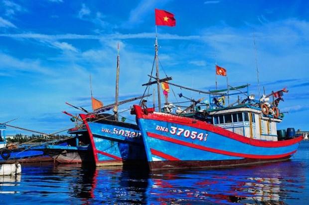 承天顺化省渔民遵守远洋渔业规定 hinh anh 1