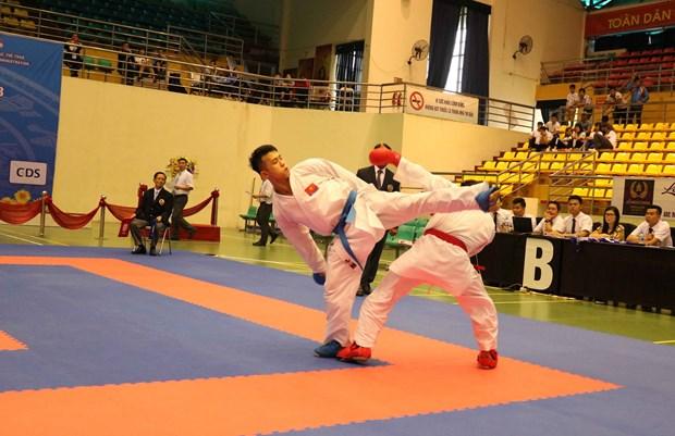 越南在第七届东南亚空手道锦标赛夺得29枚金牌 hinh anh 2
