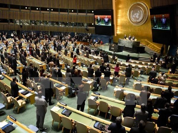 越南在联合国分享关于保障土著人民权利的经验 hinh anh 1